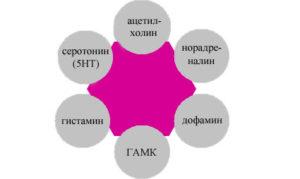 fea-dedushka